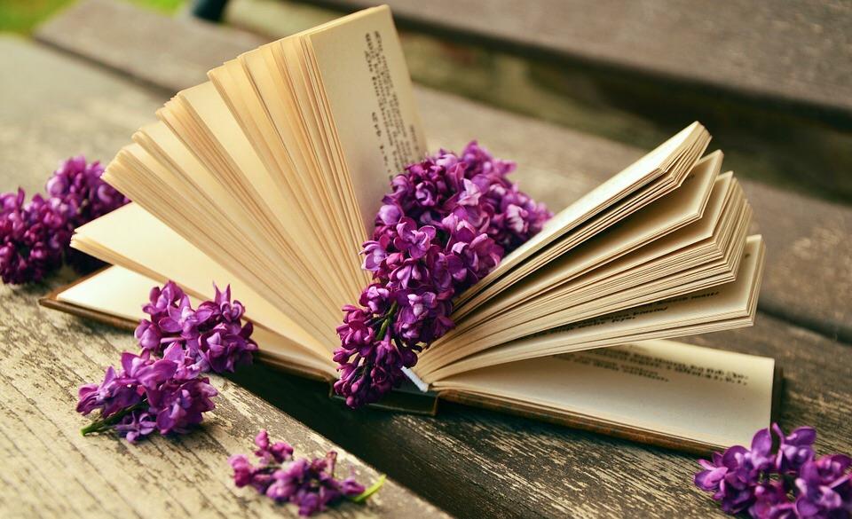 Schönes Buch